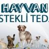 Hayvan Destekli Tedavi (HDT)